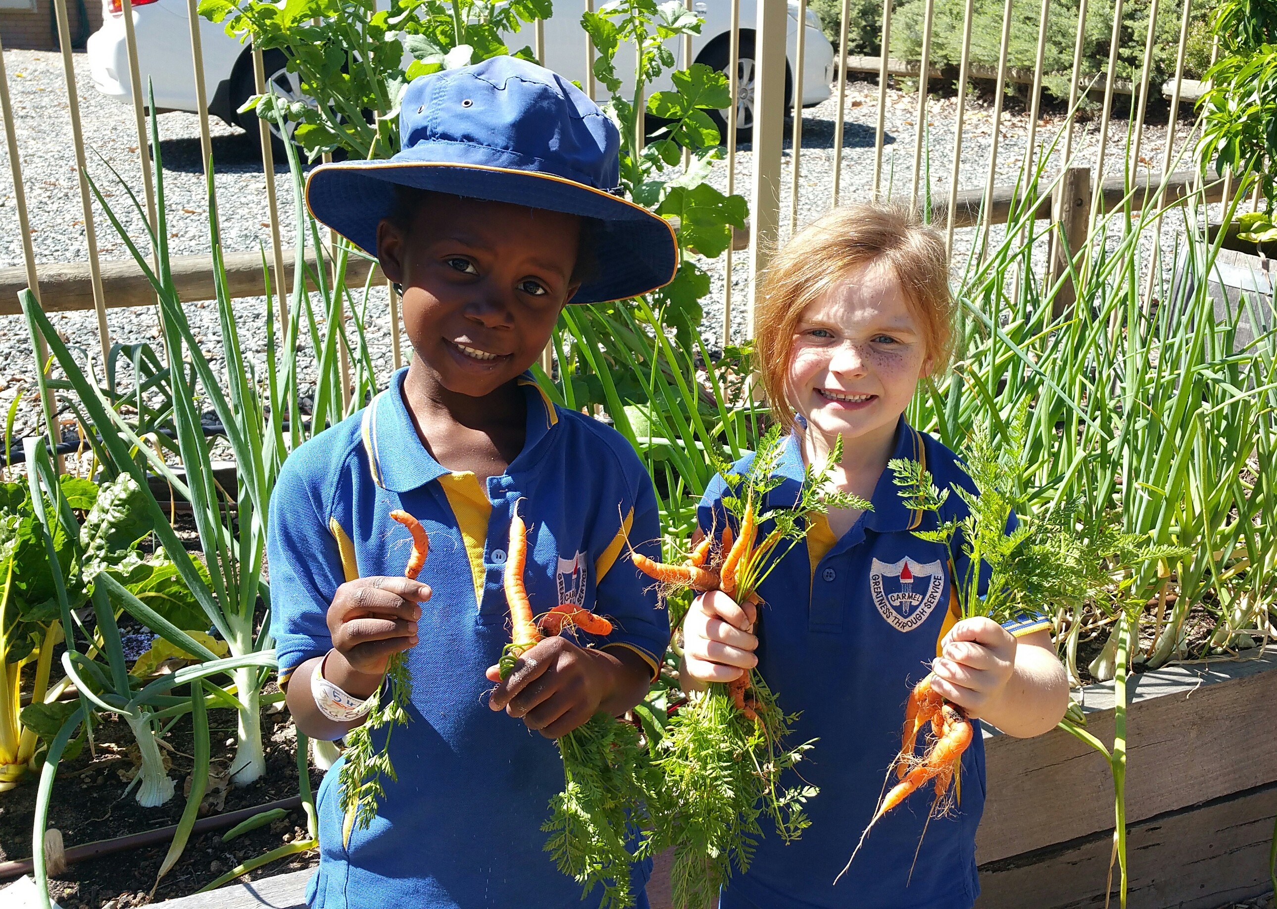 Stephanie Alexander Kitchen Garden Program Carmel Adventist College About Our School